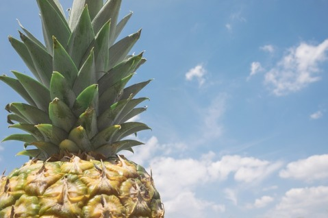 pineapple-871622_640